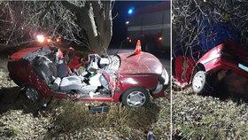 Na Písecku zemřel řidič (†48): V zatáčce vyjel ze silnice a narazil do stromu