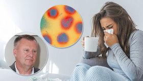 Jak poznat chřipku od nachlazení: Lékař popsal rozdíly. Horký čaj nedoporučuje