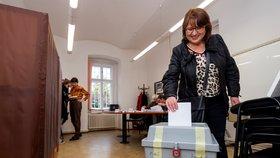 Nemocnici privatizovat nechceme, shodli se lidé v Litoměřicích v referendu