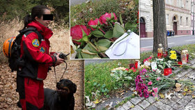 """Růže """"mamince"""" a svíčky na místě tragické nehody: Sražená záchranářka (†35) tudy chodila pravidelně"""