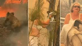 """""""Bylo to děsivé."""" Babička se v podprsence vrhla do plamenů. Hrdinka zachránila koalu"""