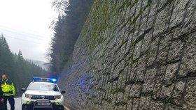 Šok v Krkonoších: Husky s postrojem uštval jelena k smrti! Zvíře se zřítilo ze čtyřmetrové zdi