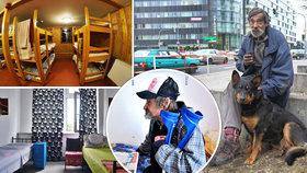 Do noclehárny i se psem: Praha představila zimní opatření pro lidi bez domova