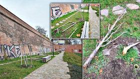 Vandalové řádí v parku na Folimance. Zničili tu několik stromů. Posvítí si na ně strážníci