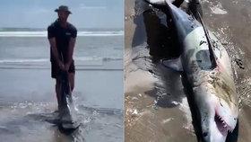 Lidožravý žralok pomalu umíral zamotaný do lana. Záchrany se dočkal na poslední chvíli