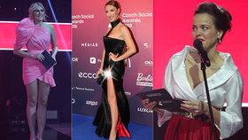 Erotické dusno na Czech Social Awards: Makarenko bez kalhotek, Janečkova Lilia s brutálním dekoltem!