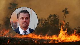 """Prezident útočí na DiCapria: """"Dává peníze na zapalování Amazonie"""""""