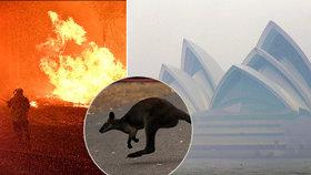 Ohnivé peklo v Austrálii: Hasiči bojují se stovkou požárů, Sydney dusí štiplavý kouř