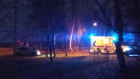 Chlapeček (8) se topil v rybníce v Třebonicích! Záchranáři ho oživovali desítky minut