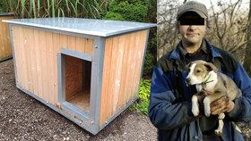Brno chce dostat bezdomovce do nocleháren: Jejich psům nabízí zateplené boudy