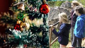 Vánoce jako noční můra samoživitelek: Dětem musí odepřít štědrovečerní večeři i dárky