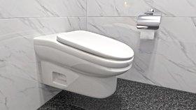 Toaletní průlom: Šikmá mísa má odradit od vysedávání na WC, bolí z ní stehna