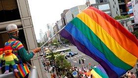Odpůrce homosexuálů ukradl duhovou vlajku a spálil ji. Soud ho poslal na 16 let za mříže