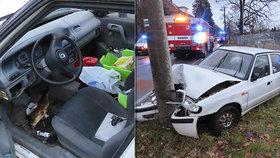 Drsná nehoda na Liberecku! Viníkem byl vánoční kapr