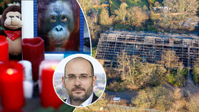 Ředitel pražské zoo o tragickém požáru v pavilonu opic: Pitomé lampiony štěstí!