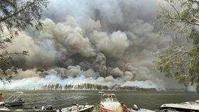 Picassova díla v ohrožení. Galerie je schovala před ničivými požáry, Australany dusí kouř