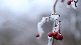 Třetí mrazivé ráno po sobě, na Šumavě bylo -18 °C. Víme, kdy se v Česku oteplí