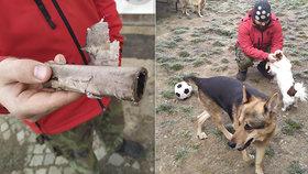 Krutá zábava na Vyškovsku: Ničemové odpalovali dělbuchy u zvířecího útulku! Šlo o pomstu?