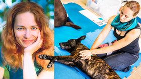 Naučte se první pomoc pro psy! Nikdo to za vás neudělá, varuje expertka!