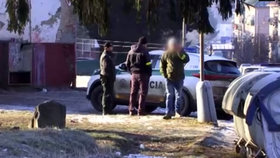 Policista údajně zmlátil pět romských dětí: Měly porušit karanténu