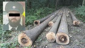 Mladého tatínka Iva zabil padající strom! Dalšího muže zavalily dvě tuny dřevotřísky