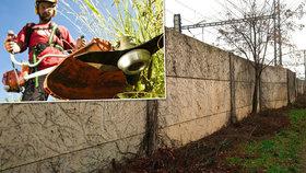 Lidé ze Správy železnic měli v Uhříněvsi vyhubit zeleň na trati. Posekali i to, co neměli
