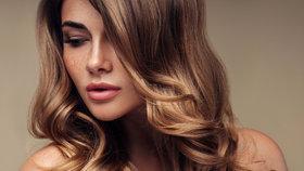 Stop suchým vlasům! Které šampony z drogerie zafungovaly na jedničku?