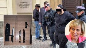 Útočník (31) s noži vtrhl do Sněmovny, vyděsil těhotnou poslankyni. Policie ho zpacifikovala