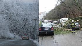 Až 20 cm nového sněhu, vichr láme stromy, tisíce lidí bez proudu. Sledujte radar Blesku
