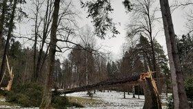 Českem se zas prožene vichr, sledujte radar Blesku. V Rohozné nadělal škody za osm milionů