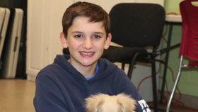 Jak dojemné! Chlapec zachránil invalidního pejska, vyrobil mu vozíček z lega!