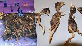 Nechutný nález na celnici: Cestující si z Číny dovezl mrtvé ptáky!