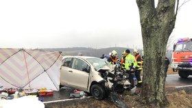Tragédie u Rýmařova: Při nehodě zemřelo dítě! Další dvě jsou zraněné