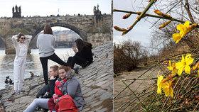 V Česku se ukáže jaro, pak přijde apríl: Teploty jako na houpačce, hodit se bude deštník