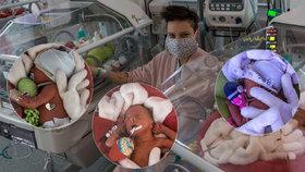 Tři sluníčka v temných časech: Maminka Kateřina porodila trojčátka