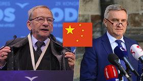 Čínskými výhrůžkami Kuberovi se zabývala ochranka Senátu. Obrátila se na ni vdova Věra