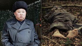 Mrtvoly používají jako hnojivo, tvrdí žena, která utekla ze severokorejského koncentráku
