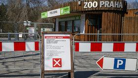 Zavřená Zoo Praha: Od magistrátu dostane velkou finanční injekci