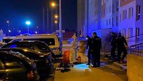 Přijeli z Rakouska a měli horečky, zasahujícím policistům nic neřekli! Policejní stanici museli vyklidit