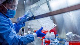 Američané chtějí v Česku vyrábět vakcínu proti covid-19. Za miliardy koupili závod u Prahy