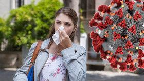 Alergici v ohrožení: Jsou náchylnější k nákaze, varuje lékařka. Na co si dát pozor?