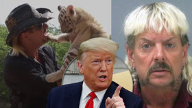 Milost díky Netfixu? Trump chce propustit Pána tygrů na svobodu!
