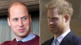 Harry se vrátí s prosíkem? Brácha William povede královské finance!