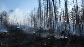 U Ralska hořel les: Byl vyhlášen druhý stupeň požárního poplachu