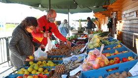 Vitamíny v Dolních Chabrech. Ve formě ovoce a zeleniny je na náměstí nabídne farma