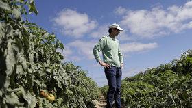 Vláda schválila půl miliardy na splácení půjček pro zemědělce, o peníze žádalo 5000 farmářů