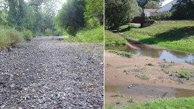 Děsivé počasí: Na Moravě vysychají řeky