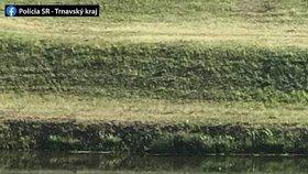 """""""Co to je za idiota?"""" Muž si namydlil auto u malebné řeky: Způsobil poprask na sociálních sítích!"""
