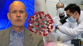 Koronavirus unikl z laboratoře, je přesvědčen expert. Řekl, proč teorie o tržnici nesedí