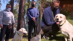 Vězeň zachránil život civilnímu kolegovi: Dnes cvičí psy pro zrakově postižené